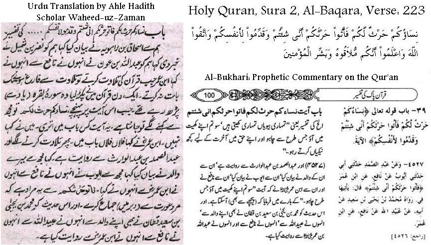 quran and hadith about homosexuality