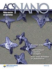 <i>ACS Nano</i> Academic journal