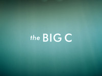 Picture of a TV show: The Big C