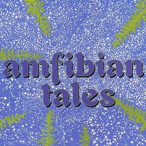<i>Amfibian Tales</i> 2000 studio album by Tom Marshall and Co.