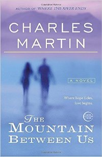 The mountain between us book free online