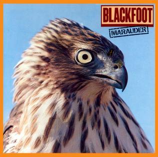<i>Marauder</i> (Blackfoot album) 1981 studio album by Blackfoot