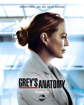 Grey S Anatomy Season 17 Wikipedia