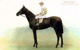 Rock Sand British-bred Thoroughbred racehorse