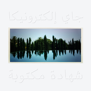 "A photo of a swimming pool against a white background with ""Jay Electronica"" and ""A Written Testimony"" written in Arabic."
