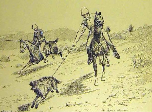 Speared hyena.JPG