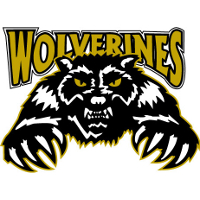 Whitecourt Wolverines (2008–12)