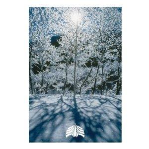 Tokyo Jihen song