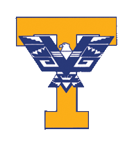 Timpview High School Public school in Provo, Utah, United States of America