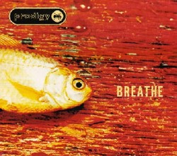 Breathe (The Prodigy song) song by The Prodigy