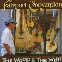 <i>The Wood and the Wire</i> 1999 studio album by Fairport Convention