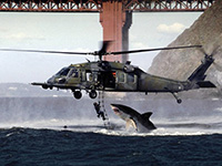 Helicopter Shark - Wikipedia
