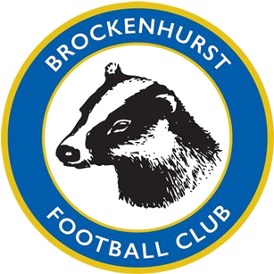 Brockenhurst F.C. Association football club in England