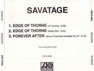 Edge of Thorns (song) 1993 song performed by Savatage