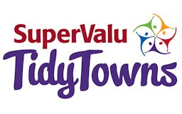 Tidy Towns (Ireland) competition to honour the tidiest and most attractive cities, towns and villages in Ireland