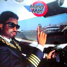 <i>In Control, Volume 1</i> 1988 studio album by Marley Marl