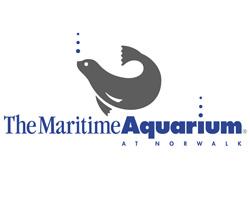 Image Result For Norwalk Aquarium