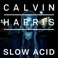 Calvin Harris - Slow Acid (studio acapella)
