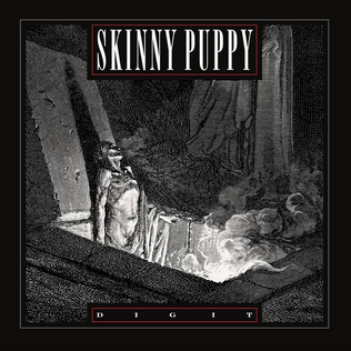 Dig It (Skinny Puppy song) Song by Skinny Puppy
