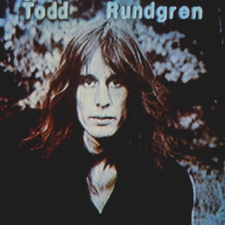 <i>Hermit of Mink Hollow</i> album by Todd Rundgren