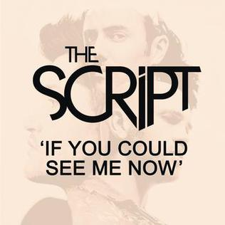 If You Could See Me Now (The Script song) single