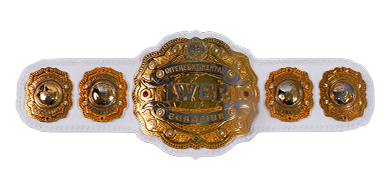 Image result for IWGP Intercontinental Championship""