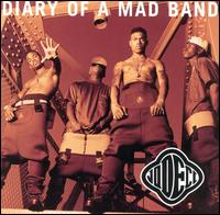 Diary of a mad band wikipedia for Classic house albums 90s