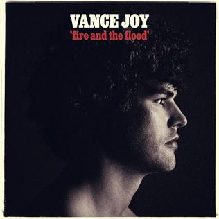 Fire and the Flood Song by Vance Joy