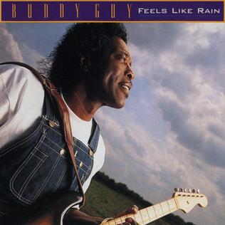 <i>Feels Like Rain</i> 1993 studio album by Buddy Guy