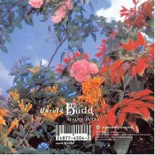 <i>Avalon Sutra / As Long as I Can Hold My Breath</i> 2005 studio album by Harold Budd