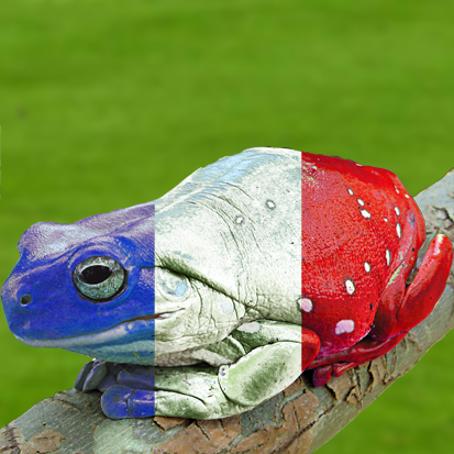 French_Frog.png