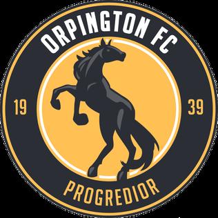Orpington F.C. Association football club in England