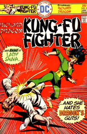 Cover to Richard Dragon, Kung Fu Fighter #5, Shiva's first appearance. Art by Dick Giordano.