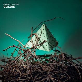 <i>FabricLive.58</i> 2011 compilation album by FabricLive