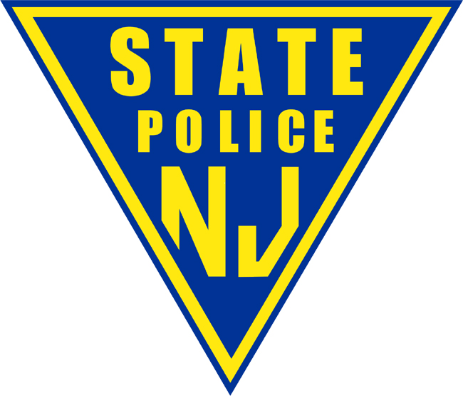 Image result for njsp logo