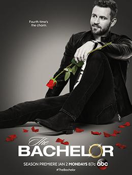 bachelor wikipedia