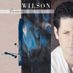 <i>Brian Wilson</i> (album) 1988 studio album by Brian Wilson