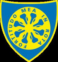 Carrarese Calcio Association football club in Italy