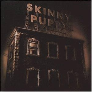 <i>The Process</i> (Skinny Puppy album) 1996 album by Skinny Puppy