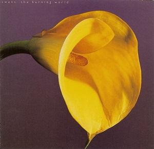 <i>The Burning World</i> (album) 1989 studio album by Swans