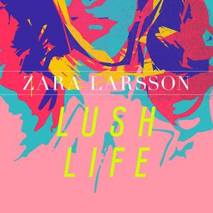 Zara Larsson - Lush Life (studio acapella)