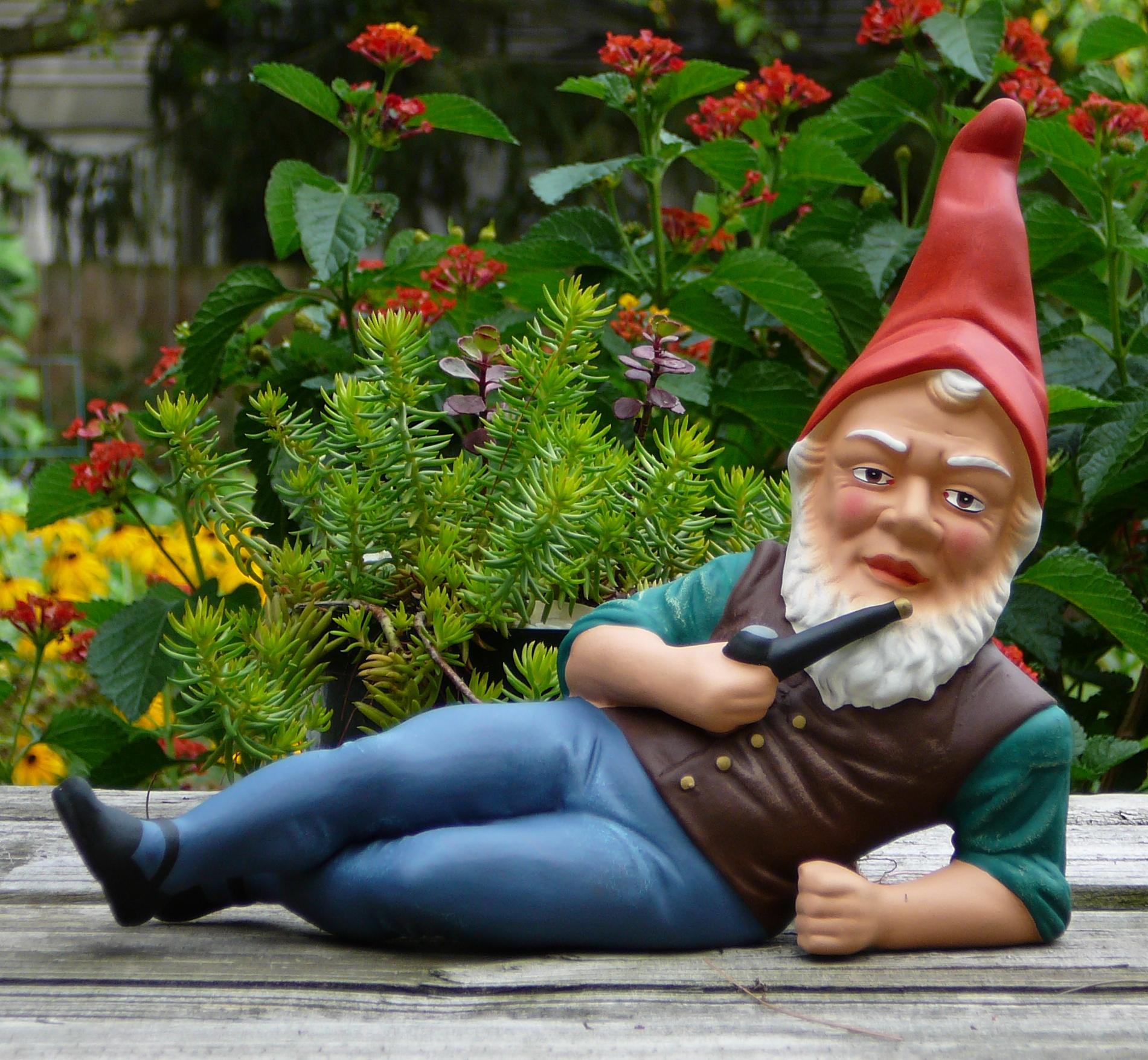 Gnome In Garden: Garden Gnomes History Photograph