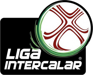 https://upload.wikimedia.org/wikipedia/en/9/90/Liga_Intercalar_logo.png