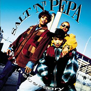 <i>Very Necessary</i> 1993 studio album by Salt-N-Pepa