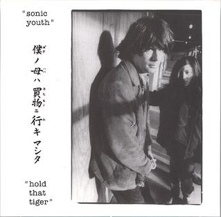 <i>Hold That Tiger</i> (album) 1991 live album by Sonic Youth