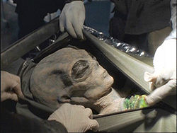 Image Result For Alien Autopsy Movie