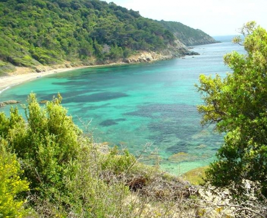 Filepampelonne Beach Saint Tropezjpg Wikipedia