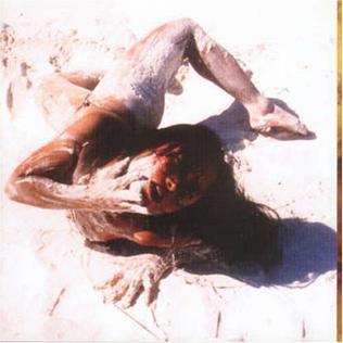 <i>The Woman in the Dunes</i> (Steven Severin album) 2000 studio album by Steven Severin
