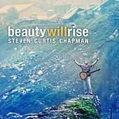 Beauty Will Rise cover.jpg
