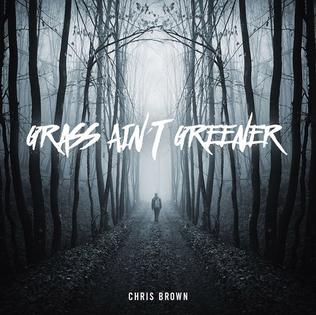 Grass Aint Greener 2016 single by Chris Brown